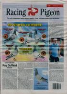 Racing Pigeon Magazine Issue 19/03/2021