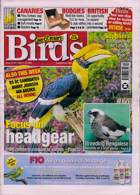 Cage And Aviary Birds Magazine Issue 24/03/2021