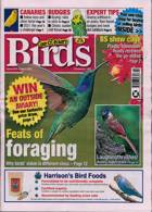 Cage And Aviary Birds Magazine Issue 02/06/2021