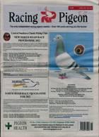 Racing Pigeon Magazine Issue 09/04/2021