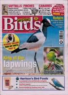 Cage And Aviary Birds Magazine Issue 09/06/2021