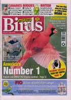 Cage And Aviary Birds Magazine Issue 14/04/2021