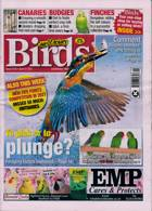 Cage And Aviary Birds Magazine Issue 21/04/2021
