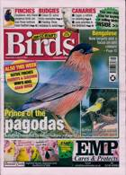 Cage And Aviary Birds Magazine Issue 23/06/2021