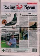 Racing Pigeon Magazine Issue 02/07/2021