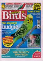 Cage And Aviary Birds Magazine Issue 28/04/2021