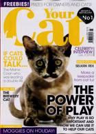 Your Cat Magazine Issue JUN 21
