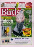 Cage And Aviary Birds Magazine Issue 12/05/2021