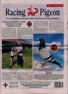 Racing Pigeon Magazine Issue 14/05/2021