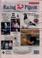 Racing Pigeon Magazine Issue 16/07/2021