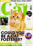 Your Cat Magazine Issue SEP 21