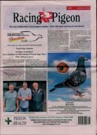 Racing Pigeon Magazine Issue 21/05/2021