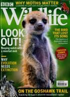 Bbc Wildlife Magazine Issue JUL 21
