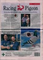 Racing Pigeon Magazine Issue 04/06/2021