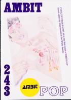 Ambit Magazine Issue 77