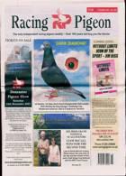 Racing Pigeon Magazine Issue 13/08/2021