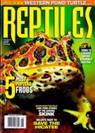 Reptiles Magazine Issue 08