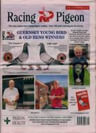 Racing Pigeon Magazine Issue 17/09/2021