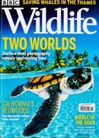 Bbc Wildlife Magazine Issue OCT 21