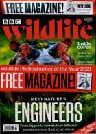 Bbc Wildlife Magazine Issue NOV 21