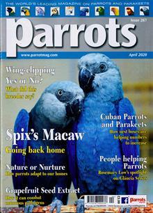 Parrots Magazine APR 20 Order Online