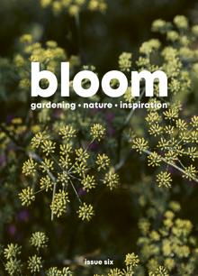 Bloom Magazine Issue 6 Order Online