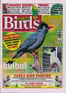 Cage And Aviary Birds Magazine 08/07/2020 Order Online