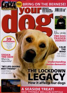 Your Dog Bumper Pack Magazine AUG 20 Order Online