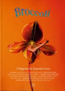 Broccoli Magazine 08 Order Online