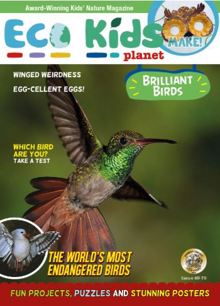 Eco Kids Planet Magazine 69/70 Order Online