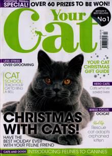 Your Cat Magazine DEC 20 Order Online
