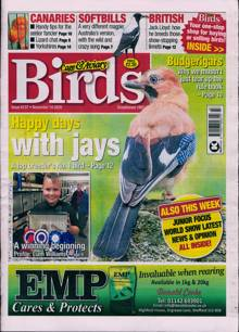 Cage And Aviary Birds Magazine Issue 18/11/2020