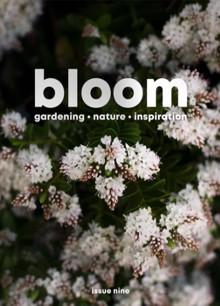 Bloom Magazine Issue 9 Order Online