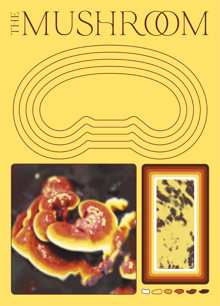 The Mushroom Magazine Issue Issue 01