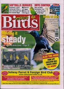 Cage And Aviary Birds Magazine Issue 28/07/2021