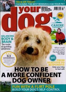 Your Dog Magazine JUL 21 Order Online